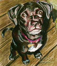 """""""Throw It"""" & other Pawtrait prints and cards now available, portion of sales goes to Pet Rescue by Judy :D   click image to go to site *Watermark does not appear on prints :-)"""