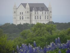 Falkenstein Castle near Kingsland, Texas - FALKENSTEIN CASTLE: Castle: Park Road 4, near Kingsland. Ofc: 512-715-0330; 401 Buchanan Drive, Suite #1, Burnet, TX 78611; Located between Burnet and Marble Falls, 5 mi NE of Kingsland, 1 mi W of the famous Longhorn Caverns and just E of Hoover's Valley. A destination wedding castle with lodging and full catering services. Perched high on a hilltop surrounded by 113 acres of Oaks. Reception Center nearby in Burnet.