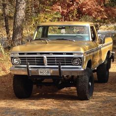 Chevy Trucks, 79 Ford Truck, Jeep Cars, Us Cars, 4x4 Trucks, Diesel Trucks, Ford 4x4, F250 Ford, Small Trucks