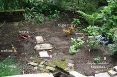 good tips for a city garden