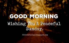 Blessed Sunday Quotes, Sunday Morning Quotes, Happy Sunday Morning, Morning Quotes Images, Morning Inspirational Quotes, Good Morning Good Night, Good Morning Wishes, Fb Quote, Sunday Motivation