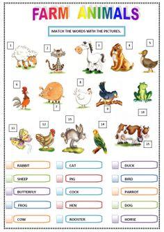 동물 사진과 영어 표현 연결 게임 Sheep Pig, English Lessons For Kids, Teaching English, Suzy, Preschool Activities, Farm Animals, Vocabulary, Chinese, Classroom