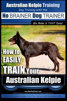 Australian Kelpie Training  Dog Training with the No BRAINER Dog TRAINER  We Make it THAT Easy How to EASILY TRAIN Your Australian Kelpie -- Find out more about the great product at the image link. (Note:Amazon affiliate link)