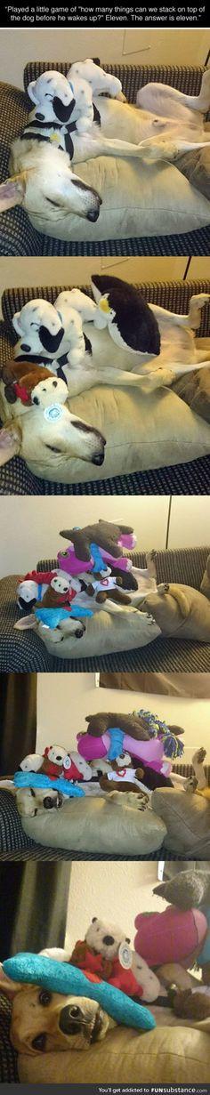 Dog Stacking Game
