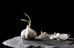 Food Still Life by Torsten Schulz, via Behance.  Garlic is awesome for Food & Food Photography