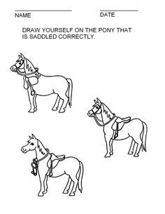 booklet pg 18 - Draw yourself on the correctly saddled horse.  The rest of this booklet can be found at; http://www.pinterest.com/HorseInterests/illustrations-handouts/
