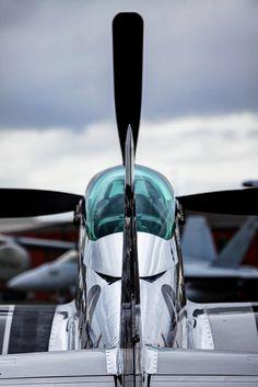 P-51 //