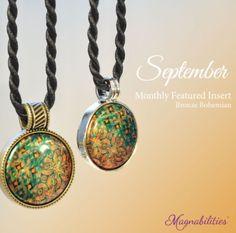 Get your September Starter Set for $15 www.brandi.magnabilities.com