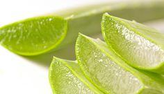 Hemorroides, prevención y tratamientos naturales