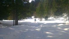 Kaltwassertal - Italien Snow, Outdoor, Italy, Outdoors, Outdoor Games, Outdoor Living, Eyes