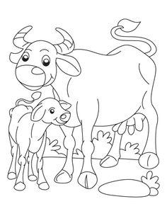Buffalo and Calf coloring page