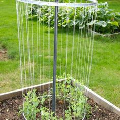 Up-cycle Old Bicycle Tire Rims Into a Trellis   DIY - Refreshing The Home