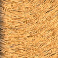 [texture] Yellow fur