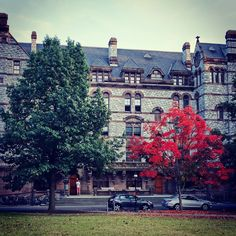 Princeton's campus gets ready for fall. Photo courtesy of bababu0204 on Instagram. Princeton Campus, College Campus, Real Simple, Travel And Leisure, New Jersey, Travel Destinations, Most Beautiful, Essentials, Street View