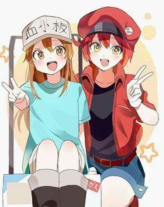 Hataraku Saibou (Cells At Work! Lolis Anime, Fanarts Anime, Kawaii Anime, Anime Characters, Anime Art, Chibi, Naruto Merchandise, Tamako Love Story, Drawn Art