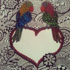 parrots zentangle art
