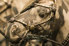 Detail, Xi'an terracotta horse with bridle bit. Qin dynasty.