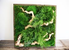 Artisan Moss 'plant paintings' are maintenance-free alternatives to living walls | Inhabitat - Green Design, Innovation, Architecture, Green Building