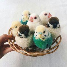 この画像のページは「まるでぬいぐるみ!初心者でも出来る、動物ぽんぽんの作り方」の記事の12枚目の画像です。こちらはさらに上級者向け。コロンとした色とりどりの小鳥たちが可愛らしいですね。関連画像や関連まとめも多数掲載しています。
