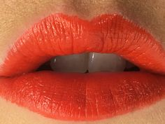 #Lipstick #TanyaBurrWildSafari #lips #clairebaker #makeup