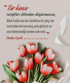Muhammed Sav, Islamic Prayer, Allah Islam, Prayers, Ethnic Recipes, Food, Iman, Instagram, Messages