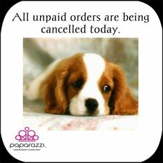 All Unpaid Paparazzi orders are being cancelled today! - http://www.dreasjewelry.com/extras/