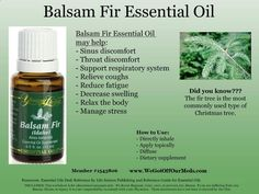 Balsam Fir. My favorite because it stopped my snoring & Sleep Apnea!! Thank you Young Living!! www.facebook.com/...