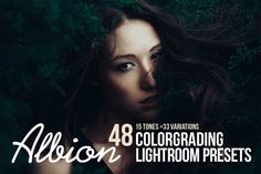 Albion - 48 Colorgrading LR Presets by Kuzmin craft supply on Creative Market