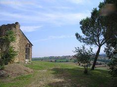 Immobilienangebot - Istia - Landgut nur wenige Kilometer vom Meer
