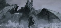 In Skyrim you have the Dragonborn a person who can absorb dragon souls and do big dragon shouts. Description from voolas.com. I searched for this on bing.com/images