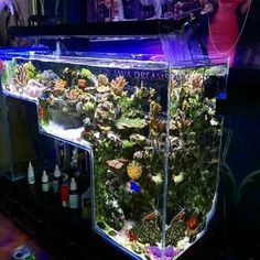 Drop off aquarium