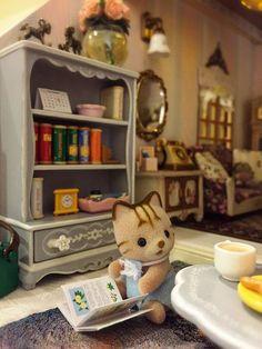 Dollhouse Design, Diy Dollhouse, Mini Things, All Things Cute, Doll Toys, Baby Dolls, Sylvanian Families House, Critters 3, Doll House Plans