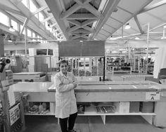 LagoFabbrica  people #lago #design #architecture #lean #production #kaizen