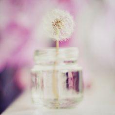 i always look for wishflowers...