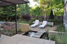 Gartenteich mit Seerosen und Schilf bepflanzen
