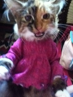 Althea doesn't like her new shirt..