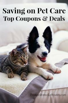 Saving on Pet Care - Coupons for Dog Food, Cat Food, and Pet Supplies
