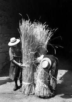 Edouard Boubat - France, 1956. °