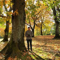 An itinerary to see Autumn in Portland, Oregon!