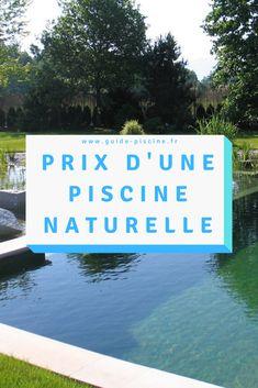 Cinema, Decoration, Design, Lagoon Pool, How To Build, Garden Projects, Swim, Plunge Pool, Decor