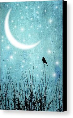 Moonlight Sonata Canvas Print by Marta Nardini. All canvas prints are professionally printed, assembled, and shipped within 3 - 4 business days and delivered ready-to-hang on your wall. Choose from multiple print sizes, border colors, and canvas materials.
