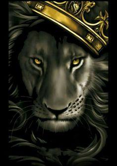 Black and grey lion with gold crown. X OGABEL Poster Og Abel Art, Art Chicano, Lion Painting, Lion Wallpaper, Lion Pictures, Leo Lion, Lion Of Judah, Lion Art, Lion Tattoo