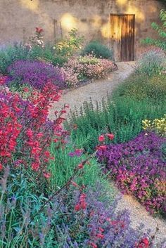 9 Plants That'll Make Your Southern California Garden Flourish via Penstemon Many of the plants bees like best have large, tubular flowers with petals that act as a landing platform. Penstemon, like this red variety, fit the bill. California Native Garden, Southern California, Xeriscape California, Landscape Design, Garden Design, Desert Landscape, Drought Tolerant Landscape, Xeriscaping, Front Yard Landscaping