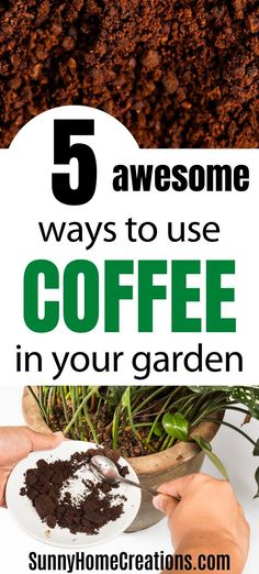 5 awesome ways to use coffee in your garden - A great way to reuse used coffee grounds is in your backyard garden. Try these ways to have better plants. Source by sunnyhomecreati - Coffee Grounds For Plants, Coffee Grounds As Fertilizer, Veg Garden, Garden Beds, Vegetable Gardening, Garden Soil, Organic Gardening, Gardening Tips, Indoor Gardening