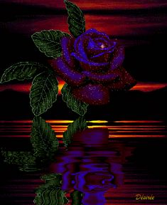 GIPHY is how you search, share, discover, and create GIFs. Wallpaper Nature Flowers, Rose Flower Wallpaper, Flowers Gif, Beautiful Rose Flowers, Beautiful Gif, Exotic Flowers, Rain Wallpapers, Pretty Wallpapers, Gif Bonito