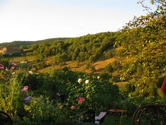 late summer sunset, the Auvergne via Deborah Harkness