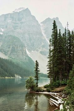Mountains / forest / nature photography / wilderness