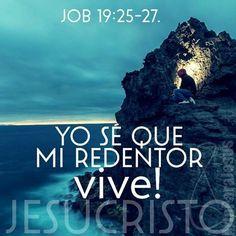 Job 19:25-26 Yo sé que mi Redentor vive, Y al fin se levantará sobre el polvo; Y después de deshecha esta mi piel, En mi carne he de ver a Dios♔