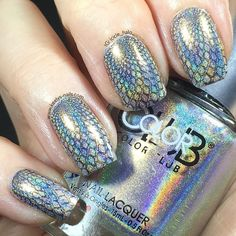 Double Holographic I love seeing #holo in the sun which in the UK is limited to a few weeks a year It's probably just as well this was a huge distraction while I was driving home! Ooops we all made it home safely promise. Mani and drive responsibly everyone! My base is @colorclubnaillacquer Harp On It stamped with Beyond and @moyou_london The Pro XL 20. #holographicnails