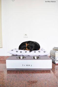 DIY Cama para mascota